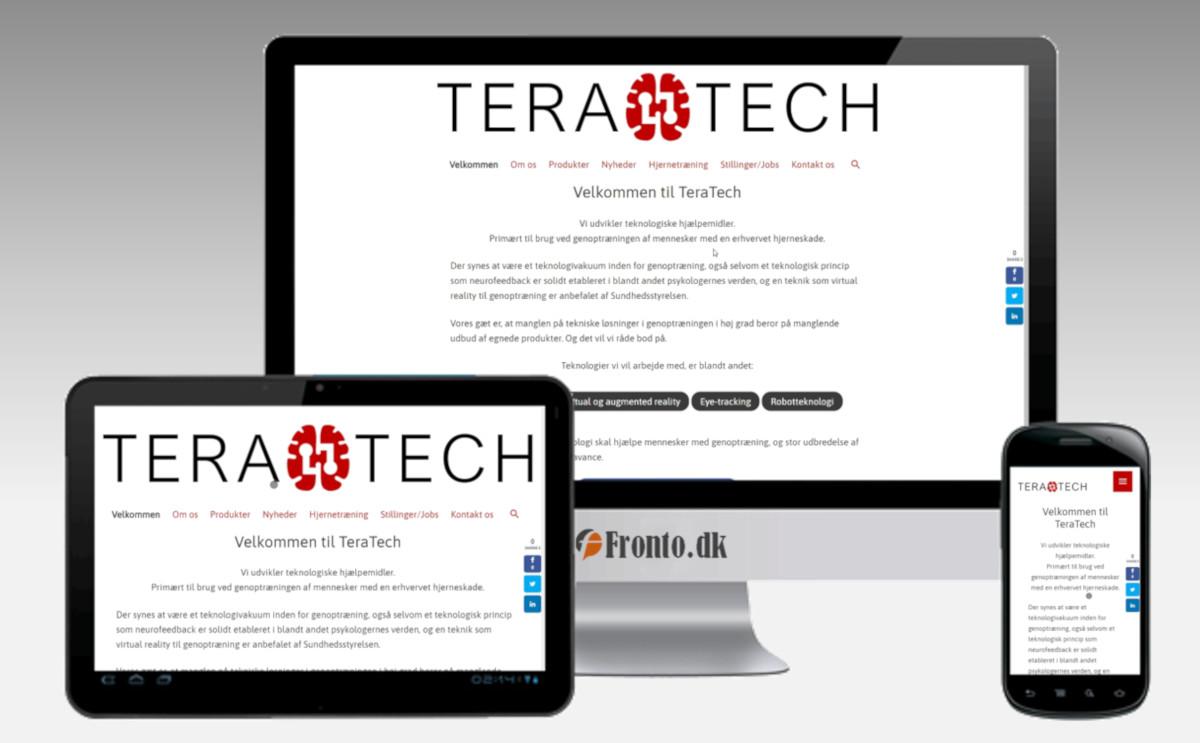 TeraTech's nye hjemmeside